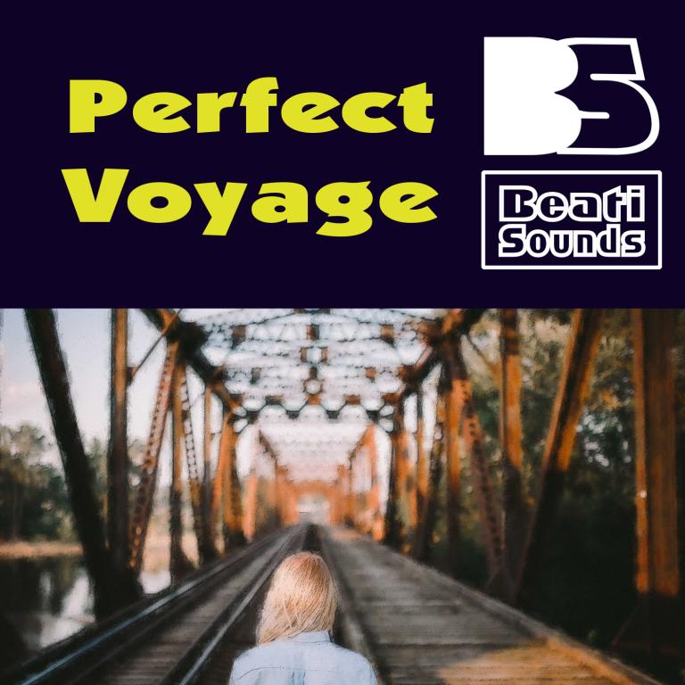 Perfect Voyage